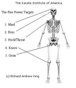 The 5 Power Targets